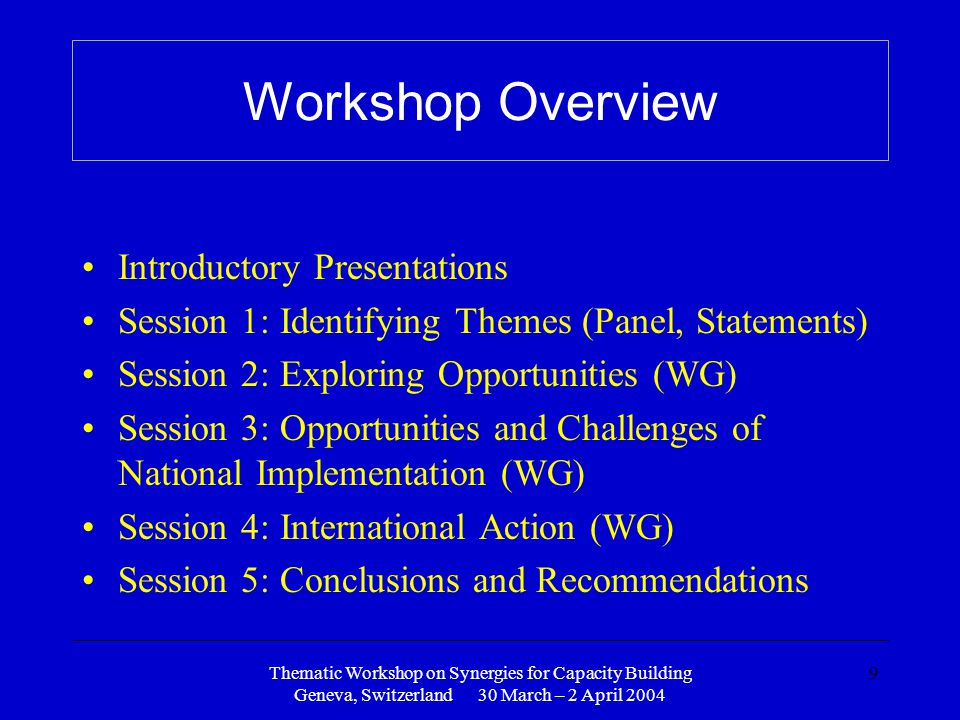 Thematic Workshop on Synergies for Capacity Building Geneva, Switzerland 30 March – 2 April 2004 9 Workshop Overview Introductory Presentations Session 1: Identifying Themes (Panel, Statements) Session 2: Exploring Opportunities (WG) Session 3: Opportunities and Challenges of National Implementation (WG) Session 4: International Action (WG) Session 5: Conclusions and Recommendations