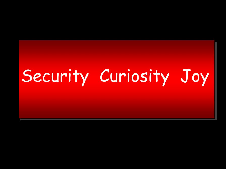 Security Curiosity Joy