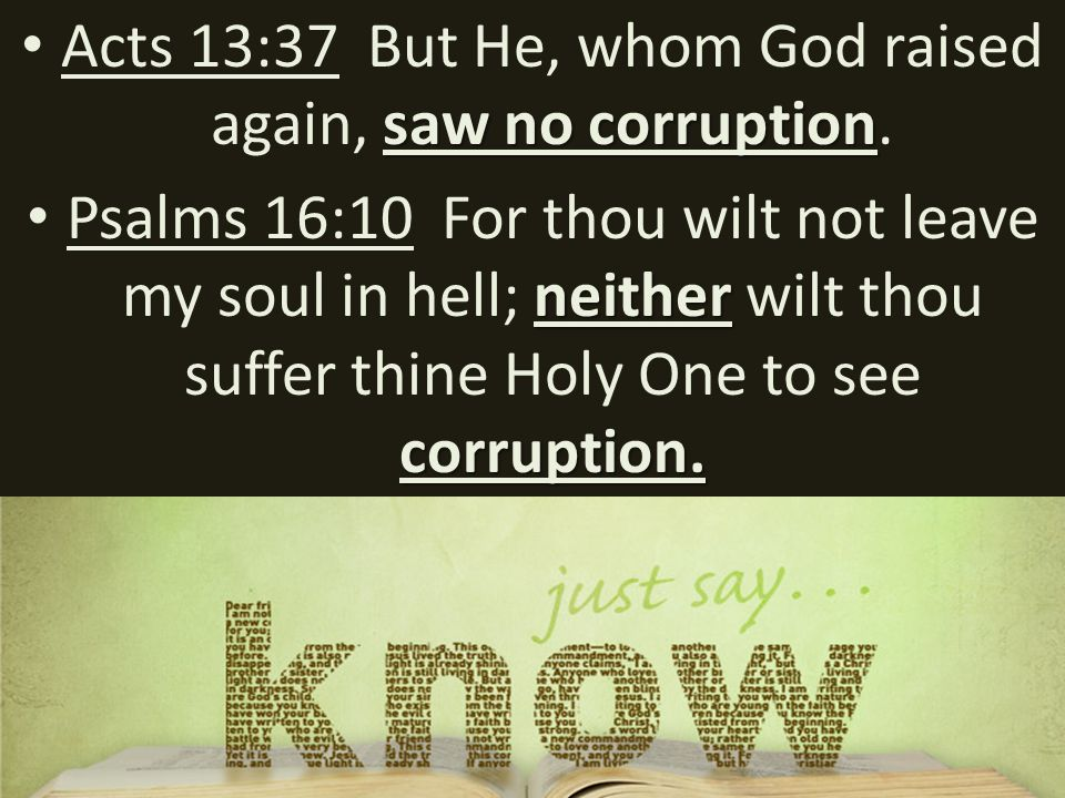saw no corruption Acts 13:37 But He, whom God raised again, saw no corruption.