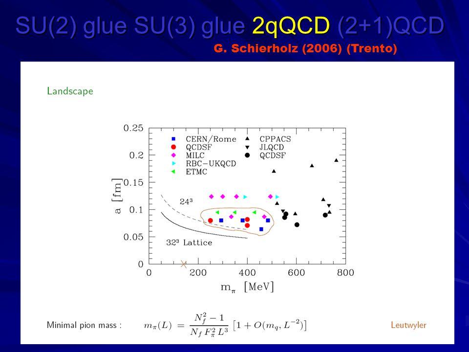 SU(2) glue SU(3) glue 2qQCD (2+1)QCD G. Schierholz (2006) (Trento)
