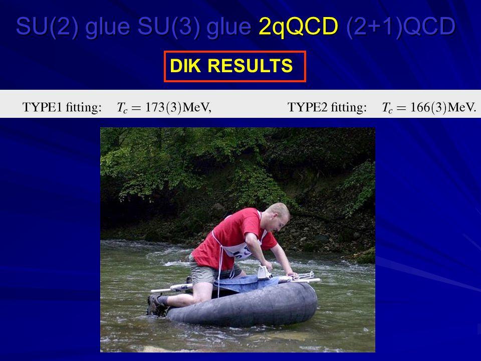 SU(2) glue SU(3) glue 2qQCD (2+1)QCD DIK RESULTS