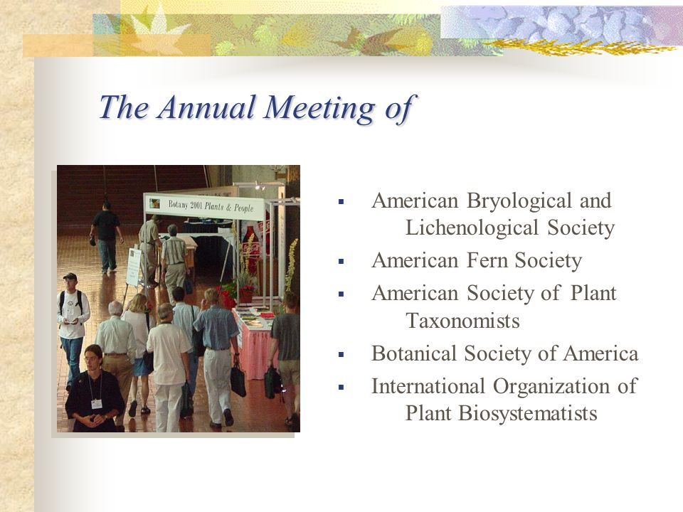The Annual Meeting of  American Bryological and Lichenological Society  American Fern Society  American Society of Plant Taxonomists  Botanical Society of America  International Organization of Plant Biosystematists