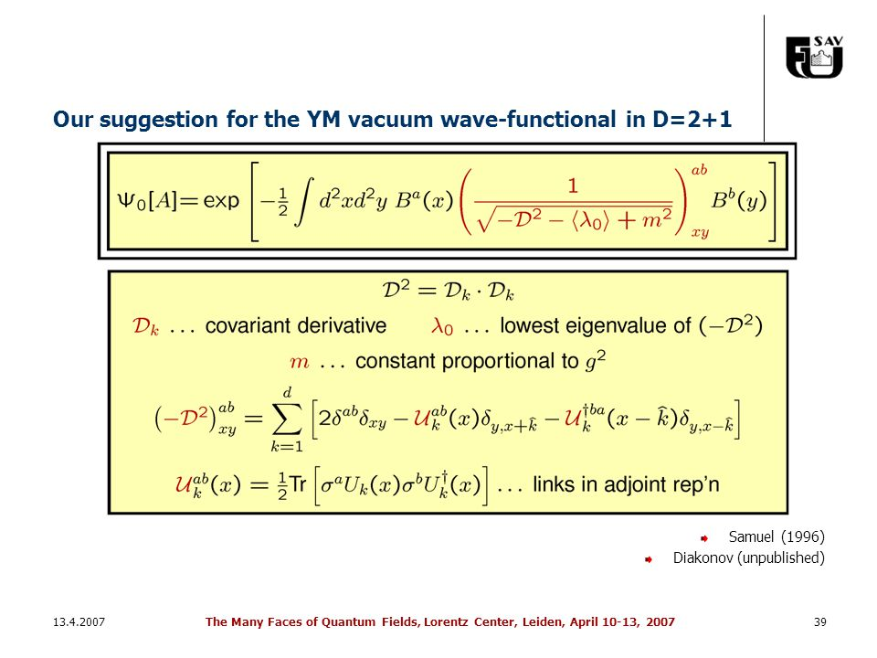 13.4.2007The Many Faces of Quantum Fields, Lorentz Center, Leiden, April 10-13, 200739 Our suggestion for the YM vacuum wave-functional in D=2+1 Samue