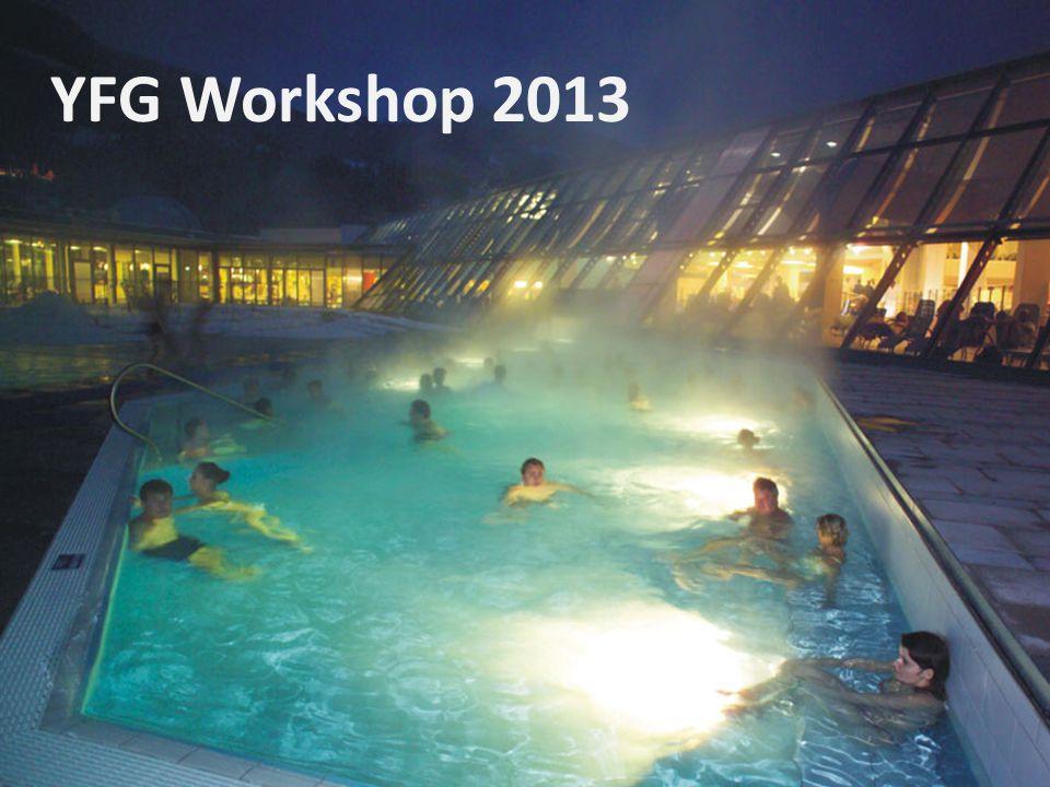 YFG Workshop 2013