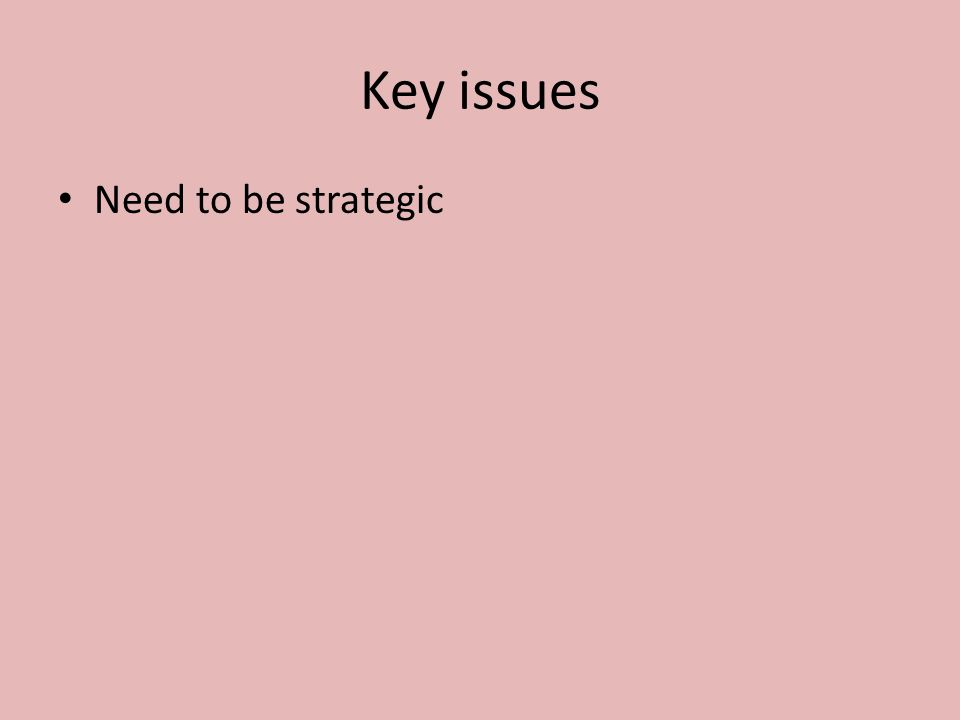 Key issues Need to be strategic A lot of fund raising effort is wasted