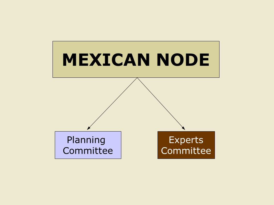 Planning Committee Experts Committee MEXICAN NODE