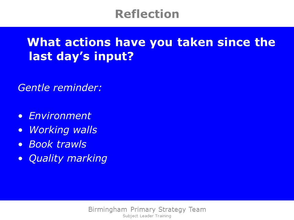 Birmingham Primary Strategy Team Subject Leader Training Reflection What actions have you taken since the last day's input.