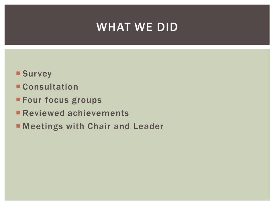  Survey  Consultation  Four focus groups  Reviewed achievements  Meetings with Chair and Leader WHAT WE DID