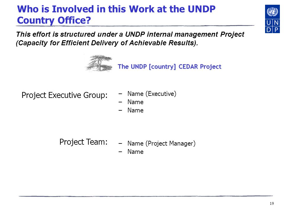 19 Who is Involved in this Work at the UNDP Country Office.