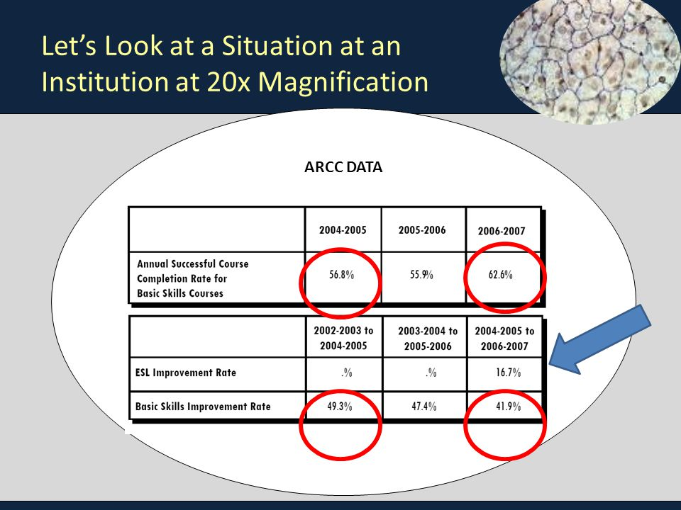 Let's Look at a Situation at an Institution at 20x Magnification ARCC DATA