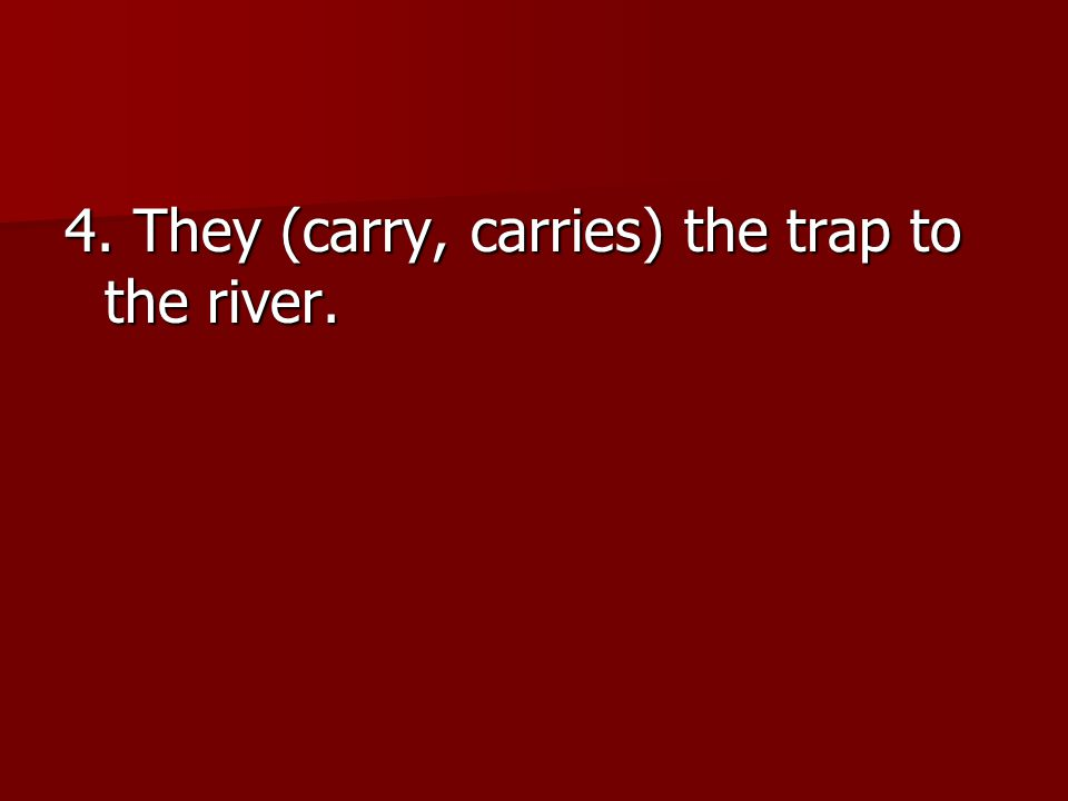 4. They (carry, carries) the trap to the river.