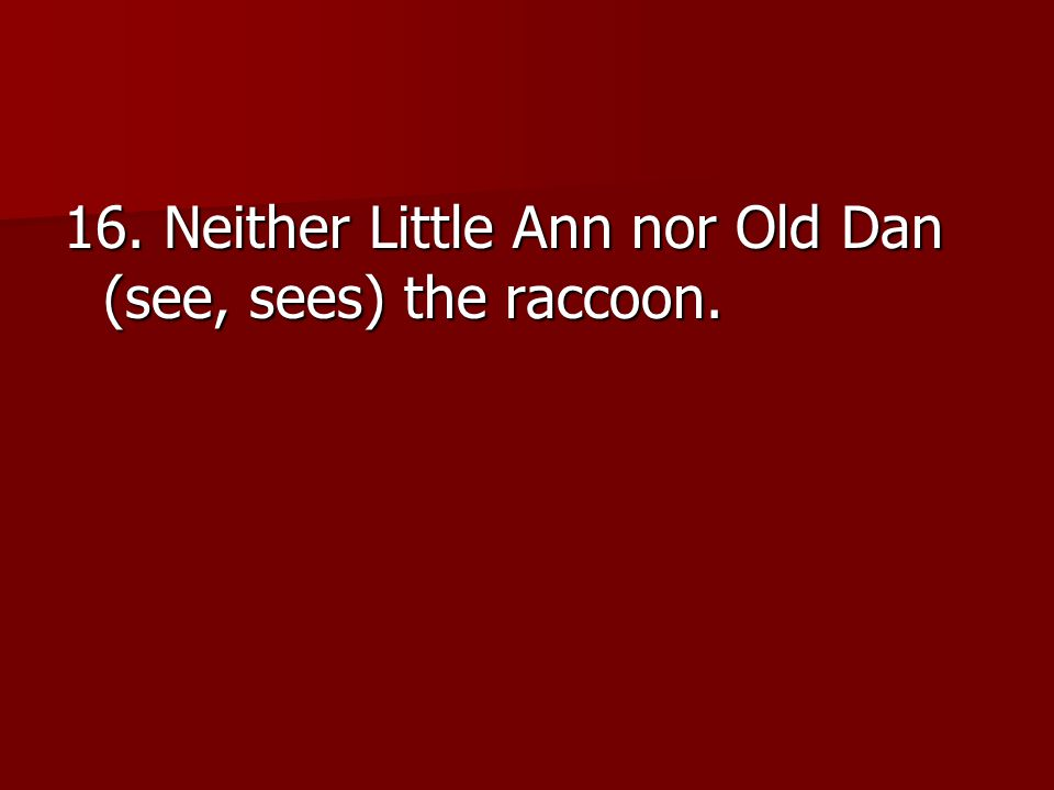 16. Neither Little Ann nor Old Dan (see, sees) the raccoon.