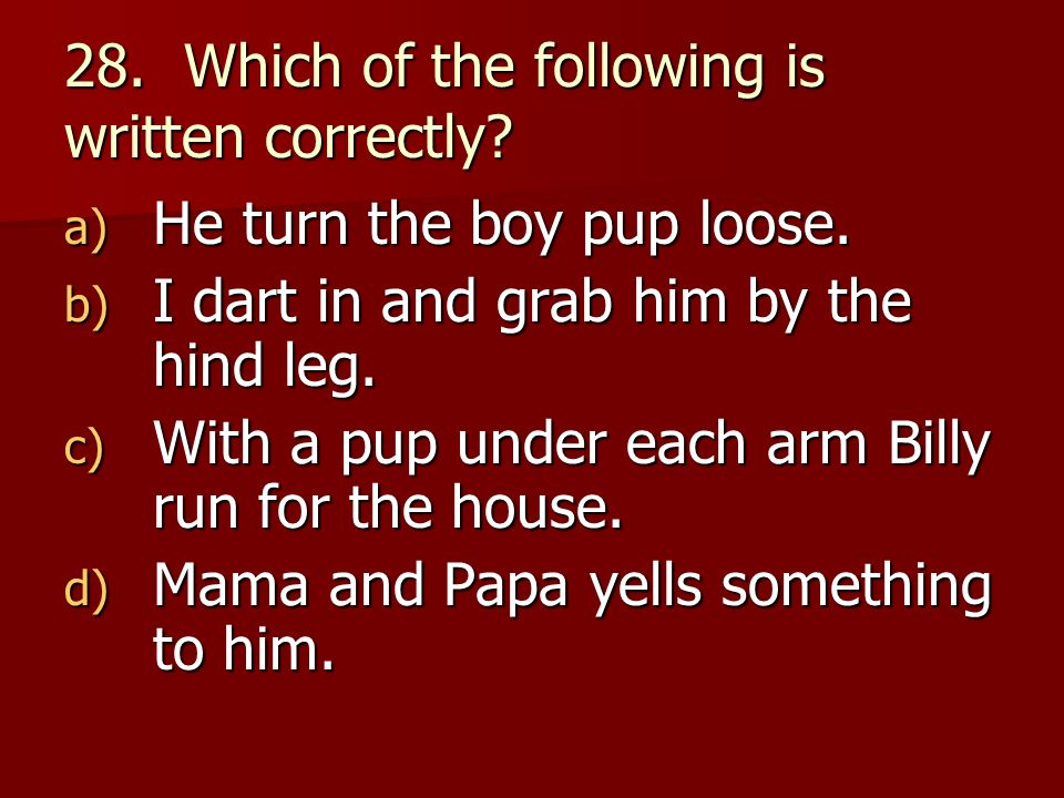 28. Which of the following is written correctly. a) He turn the boy pup loose.
