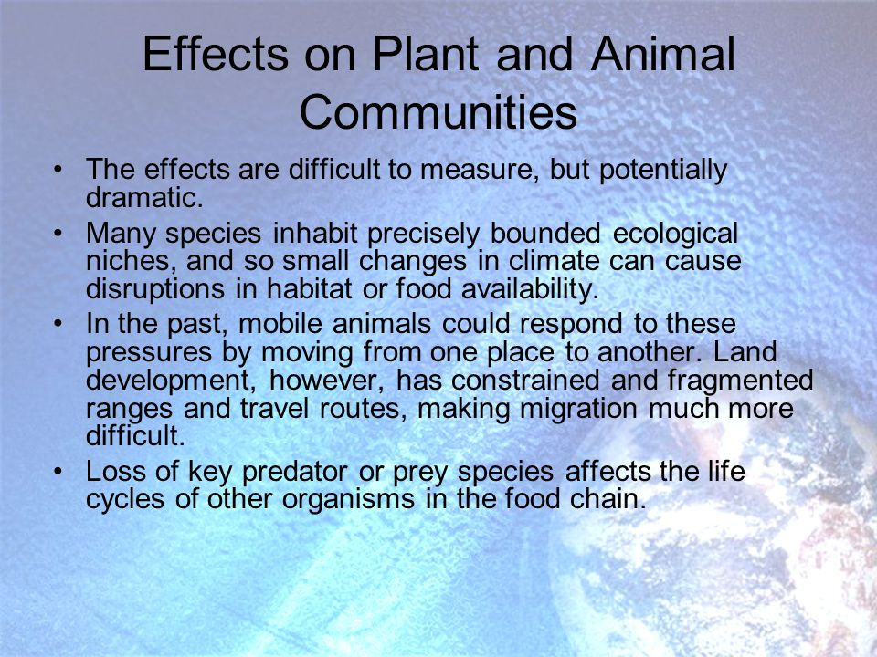 Effects on Plant and Animal Communities The effects are difficult to measure, but potentially dramatic.