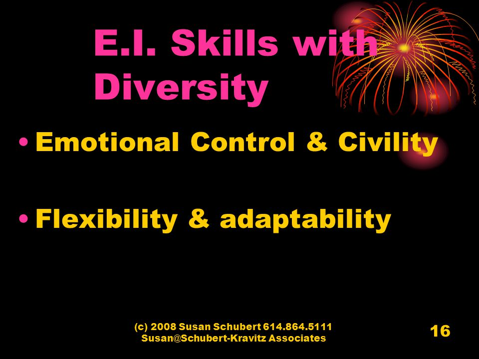 (c) 2008 Susan Schubert 614.864.5111 Susan@Schubert-Kravitz Associates 16 E.I. Skills with Diversity Emotional Control & Civility Flexibility & adapta