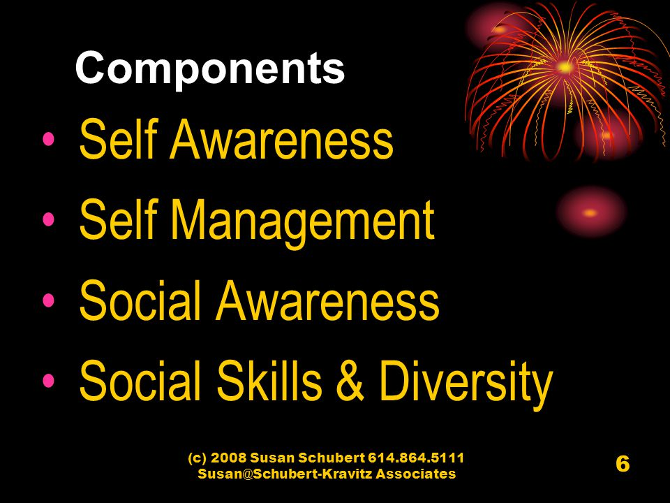 (c) 2008 Susan Schubert 614.864.5111 Susan@Schubert-Kravitz Associates 6 Components Self Awareness Self Management Social Awareness Social Skills & Di