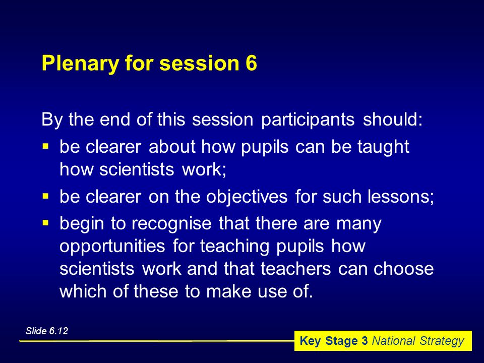 Key Stage 3 National Strategy Plenary for session 6 By the end of this session participants should:  be clearer about how pupils can be taught how scientists work;  be clearer on the objectives for such lessons;  begin to recognise that there are many opportunities for teaching pupils how scientists work and that teachers can choose which of these to make use of.