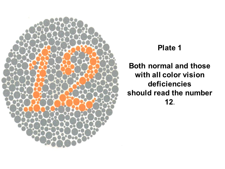 Plate 1 Both normal and those with all color vision deficiencies should read the number 12.