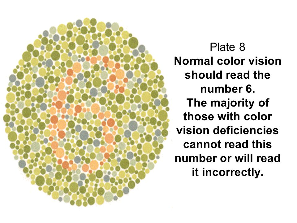 Plate 8 Normal color vision should read the number 6. The majority of those with color vision deficiencies cannot read this number or will read it inc
