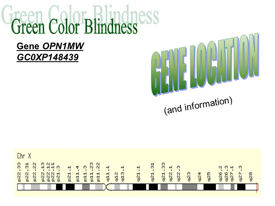 Plate 12 Normal color vision should read the number 16.