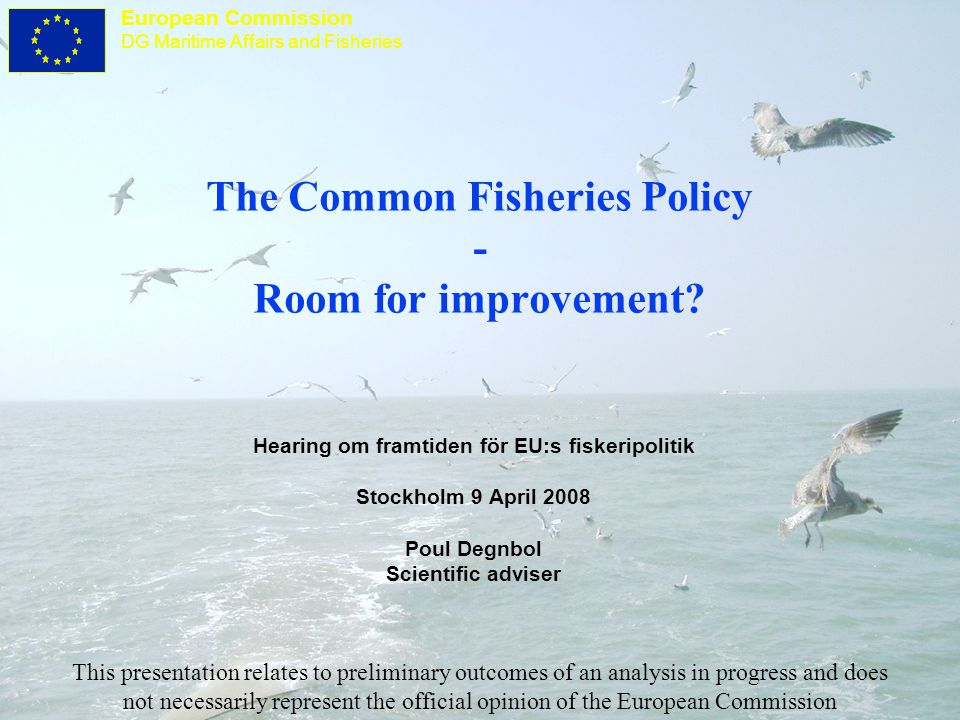 European Commission DG Maritime Affairs and Fisheries Diagnosis - outcomes