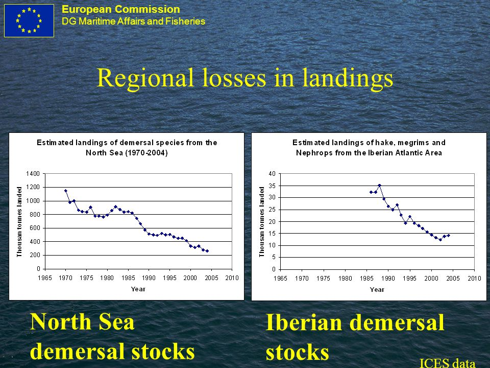 European Commission DG Maritime Affairs and Fisheries Regional losses in landings North Sea demersal stocks Iberian demersal stocks ICES data