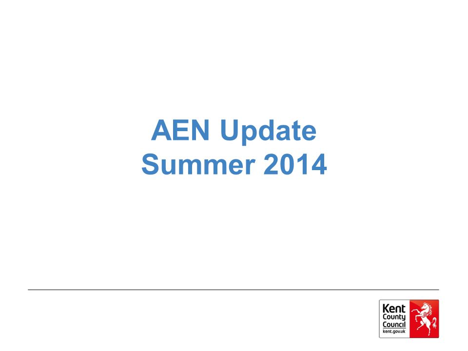 AEN Update Summer 2014