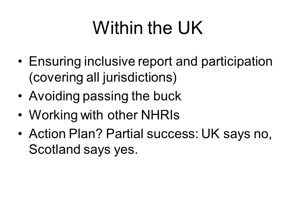 Within the UK Ensuring inclusive report and participation (covering all jurisdictions) Avoiding passing the buck Working with other NHRIs Action Plan?