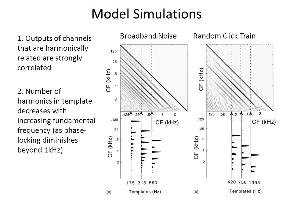 Model Simulations 1. Outputs of channels that are harmonically related are strongly correlated 2.