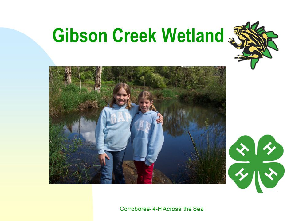 Corroboree- 4-H Across the Sea Gibson Creek Wetland