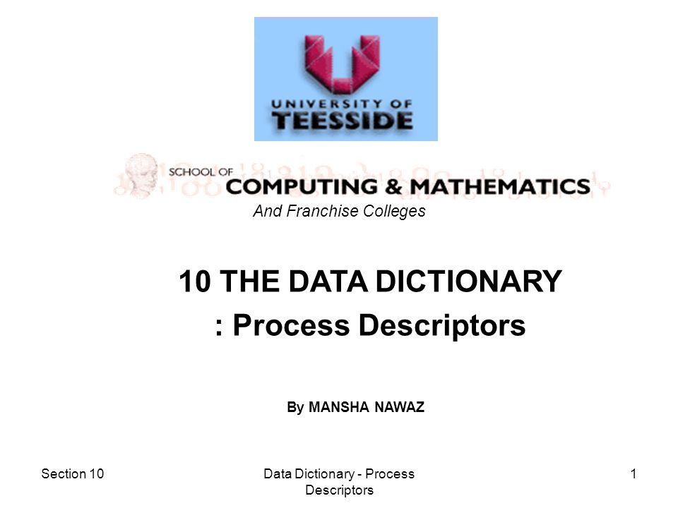 Section 10Data Dictionary - Process Descriptors 2 Aim –to be able to construct an internal process mini-spec using structured english Objectives –to identify the necessary sequence of actions –to identify any optional paths of action –to identify any possible iterative actions –to record using given syntax Process Descriptors