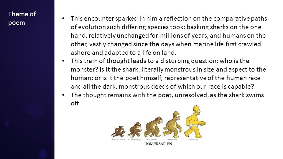 Theme of poem This encounter sparked in him a reflection on the comparative paths of evolution such differing species took: basking sharks on the one