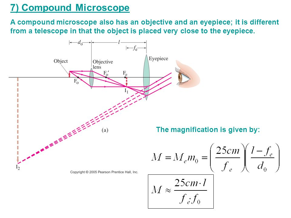 7) Compound Microscope A compound microscope also has an objective and an eyepiece; it is different from a telescope in that the object is placed very