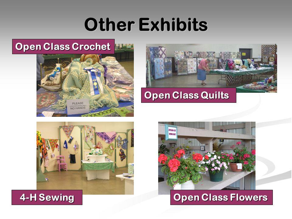 Other Exhibits 4-H Sewing Open Class Crochet Open Class Quilts Open Class Flowers