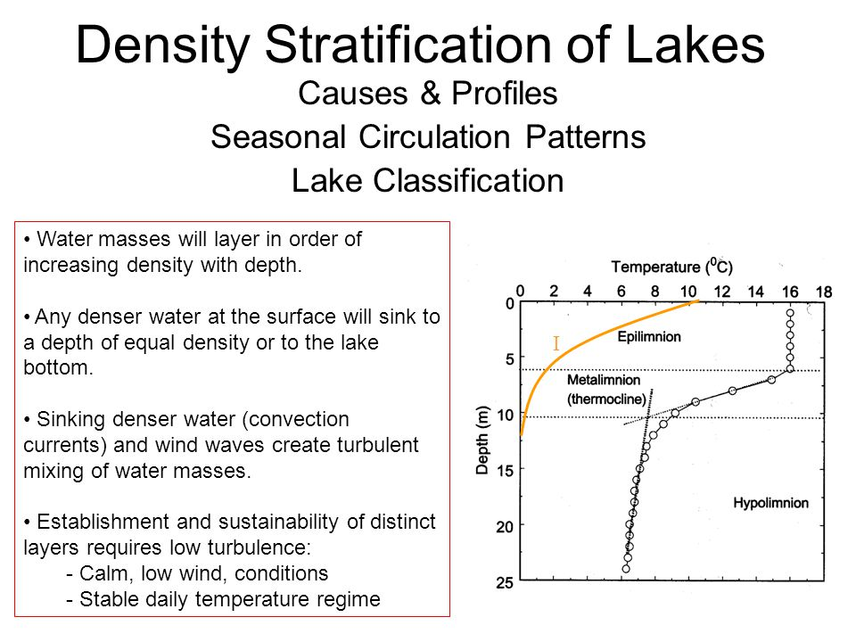 Density Stratification of Lakes Causes & Profiles Seasonal Circulation Patterns Lake Classification Water masses will layer in order of increasing density with depth.