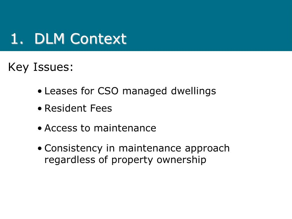 1.DLM Context Key Issues: Leases for CSO managed dwellings Resident Fees Access to maintenance Consistency in maintenance approach regardless of property ownership