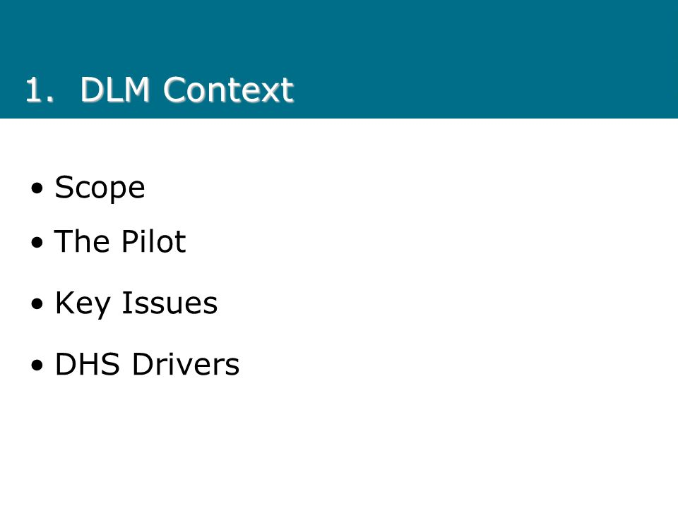 1.DLM Context Scope The Pilot Key Issues DHS Drivers