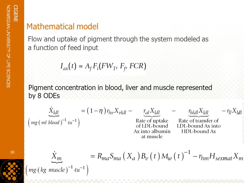 www.umb.no NORWEGIAN UNIVERSITY OF LIFE SCIENCES CIGENE 10 Mathematical model Flow and uptake of pigment through the system modeled as a function of feed input Pigment concentration in blood, liver and muscle represented by 8 ODEs
