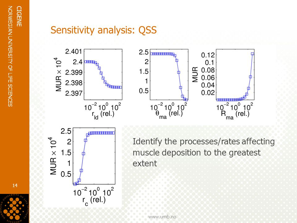 www.umb.no NORWEGIAN UNIVERSITY OF LIFE SCIENCES CIGENE 14 Sensitivity analysis: QSS Identify the processes/rates affecting muscle deposition to the greatest extent