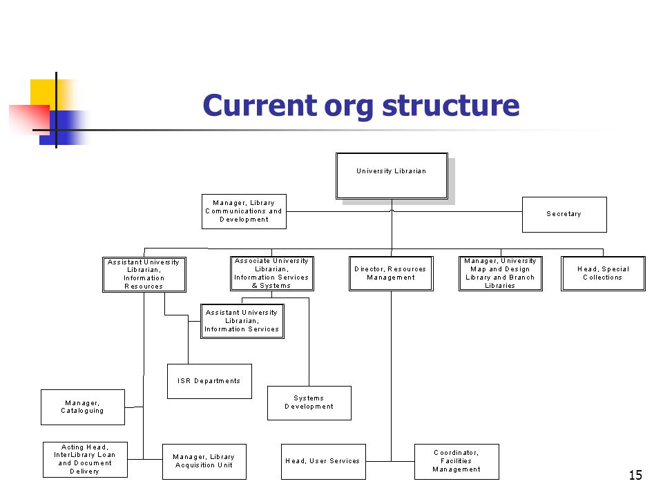 15 Current org structure