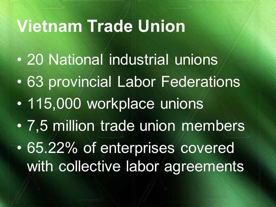 Vietnam Trade Union 20 National industrial unions 63 provincial Labor Federations 115,000 workplace unions 7,5 million trade union members 65.22% of e
