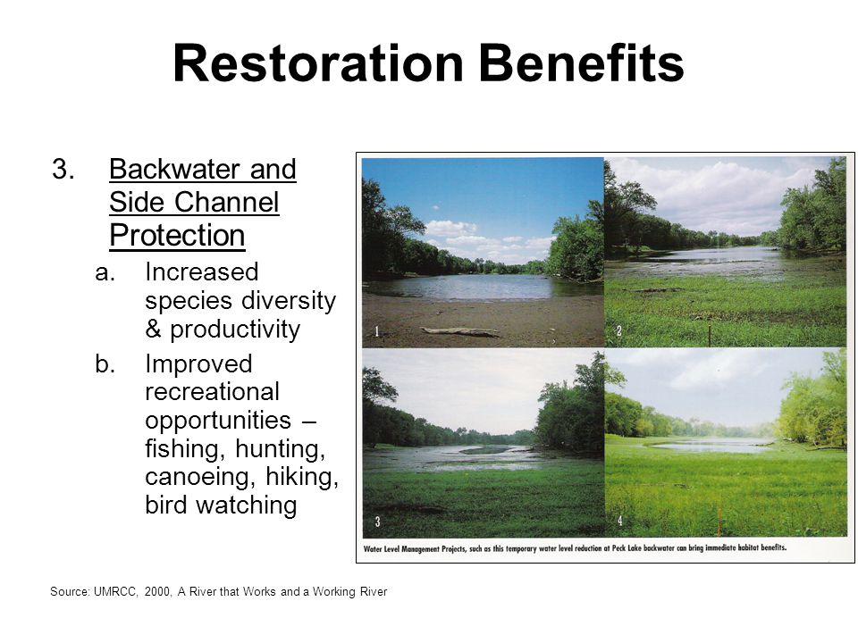 4.Habitat Rehabilitation a.Homes for birds & wildlife b.Scenic views for people c.Species diversity, both flora & fauna Restoration Benefits