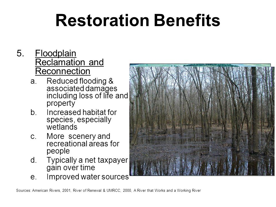 5.Floodplain Reclamation and Reconnection a.Reduced flooding & associated damages including loss of life and property b.Increased habitat for species,