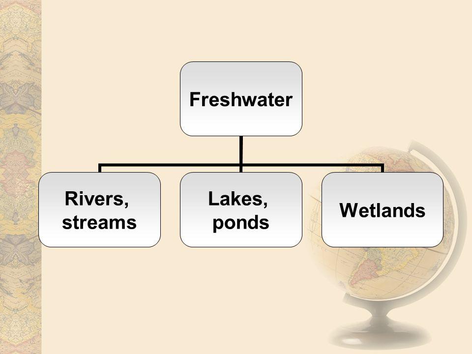 Rivers, streams Lakes, ponds Wetlands