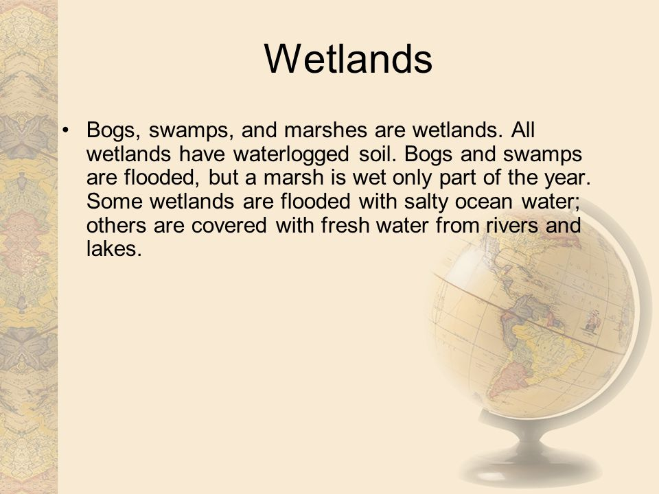 Bogs, swamps, and marshes are wetlands.All wetlands have waterlogged soil.