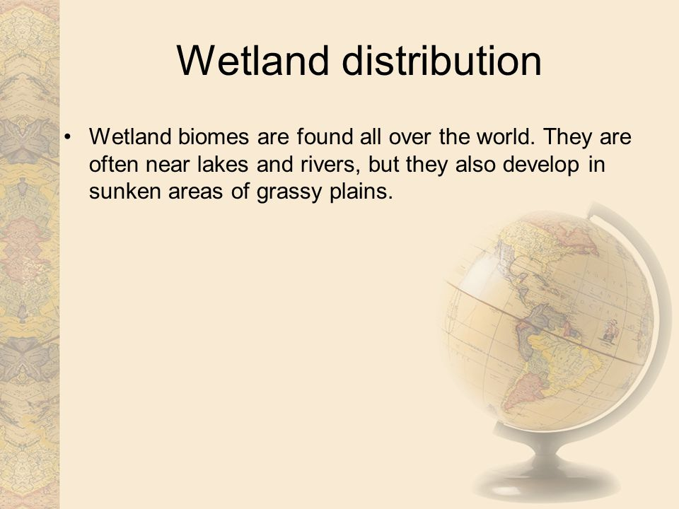 Wetland distribution Wetland biomes are found all over the world.