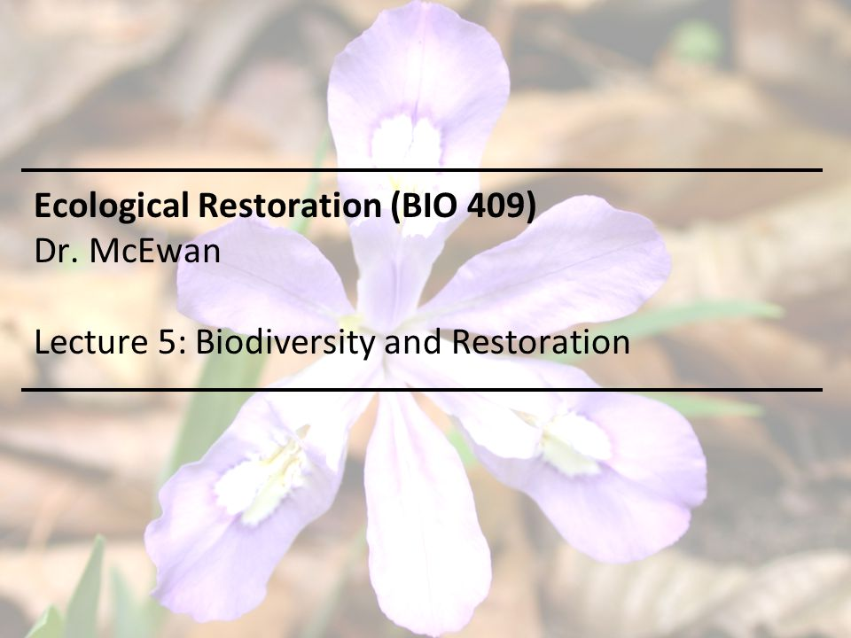 Ecological Restoration (BIO 409) Dr. McEwan Lecture 5: Biodiversity and Restoration