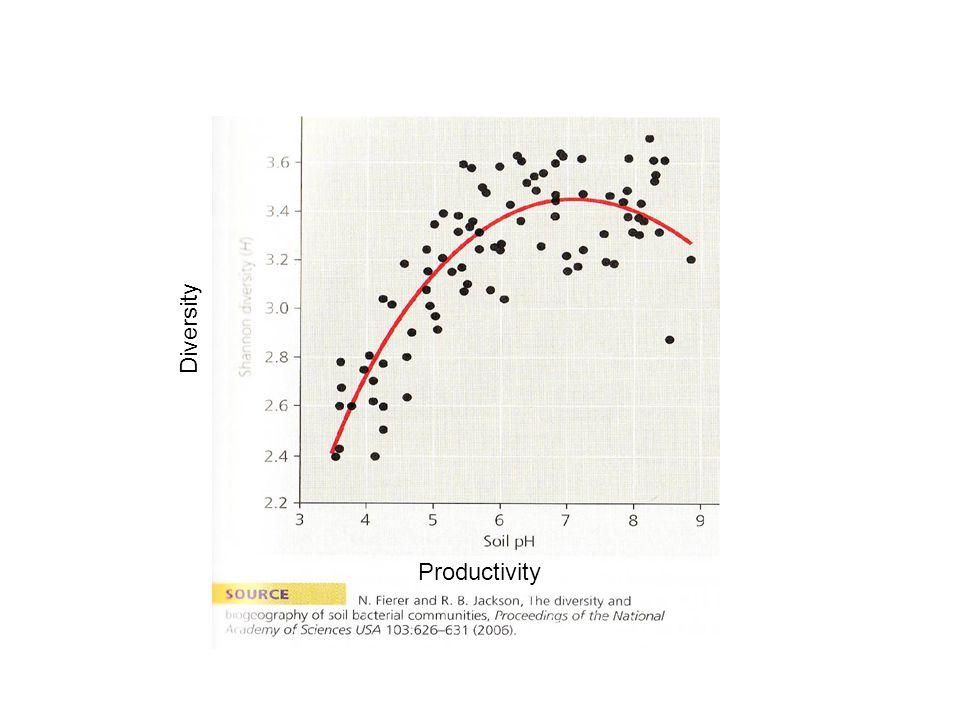 Diversity Productivity