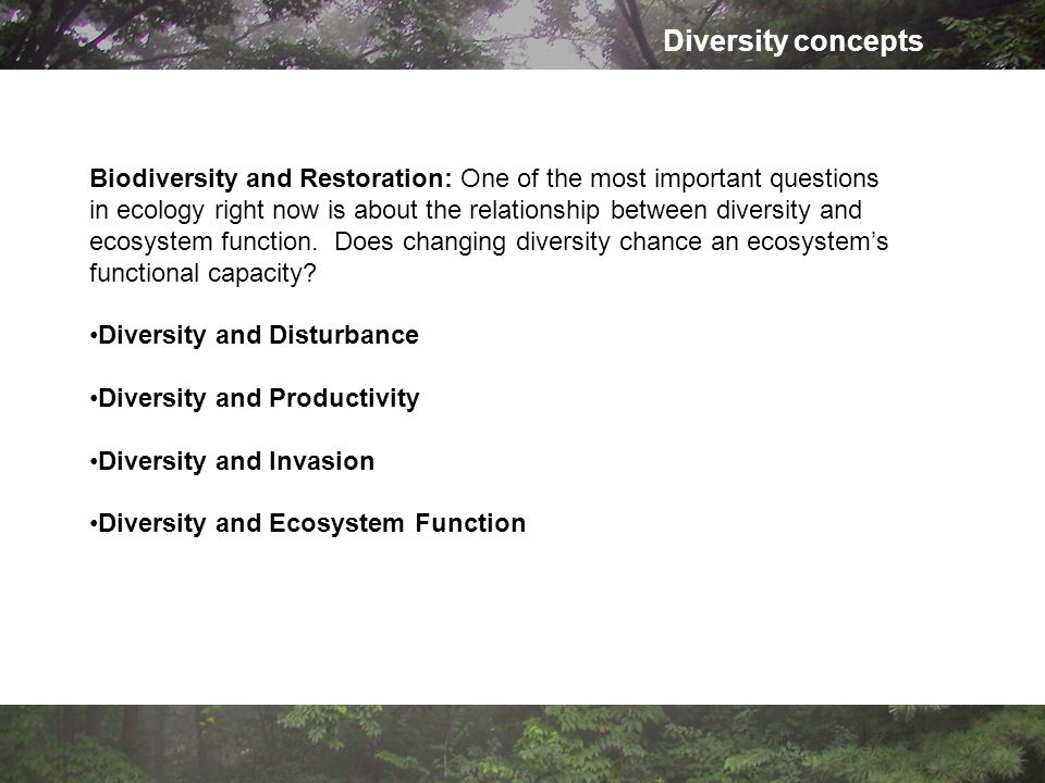 Diversity concepts Biodiversity and Restoration: One of the most important questions in ecology right now is about the relationship between diversity and ecosystem function.