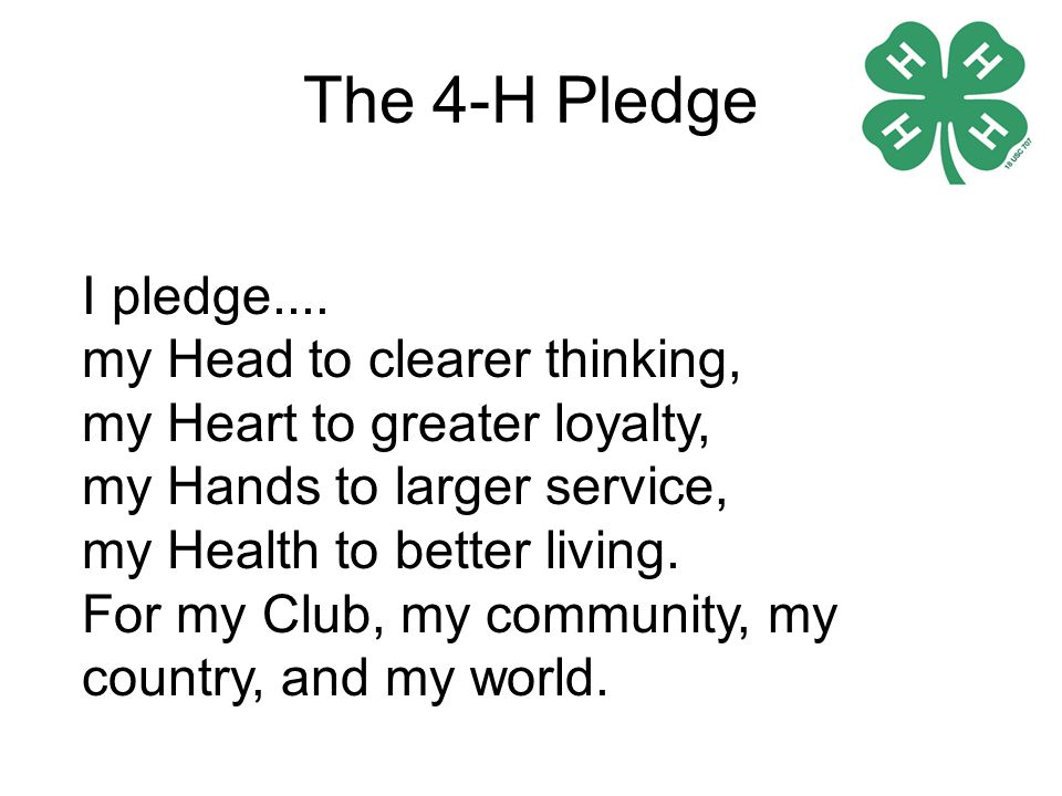 The 4-H pledge was written by Otis Hall, state 4-H leader of Kansas and was adopted by the National 4-H camp in Washington DC in 1927 and had remain unchanged until 1973 when they added and My World .